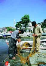 Amasra Balıkçılar