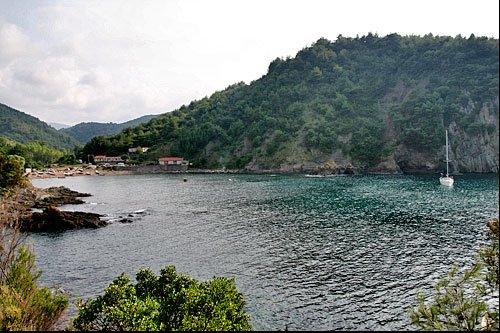 Koy Koy Karadeniz